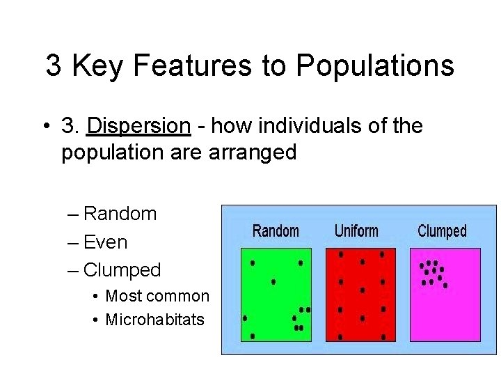 3 Key Features to Populations • 3. Dispersion - how individuals of the population