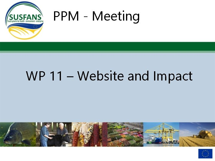 PPM - Meeting WP 11 – Website and Impact