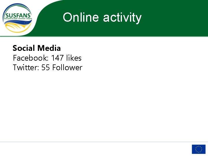 Online activity Social Media Facebook: 147 likes Twitter: 55 Follower