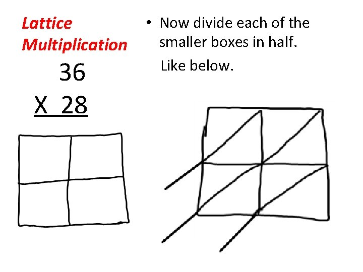 • Now divide each of the Lattice smaller boxes in half. Multiplication 36