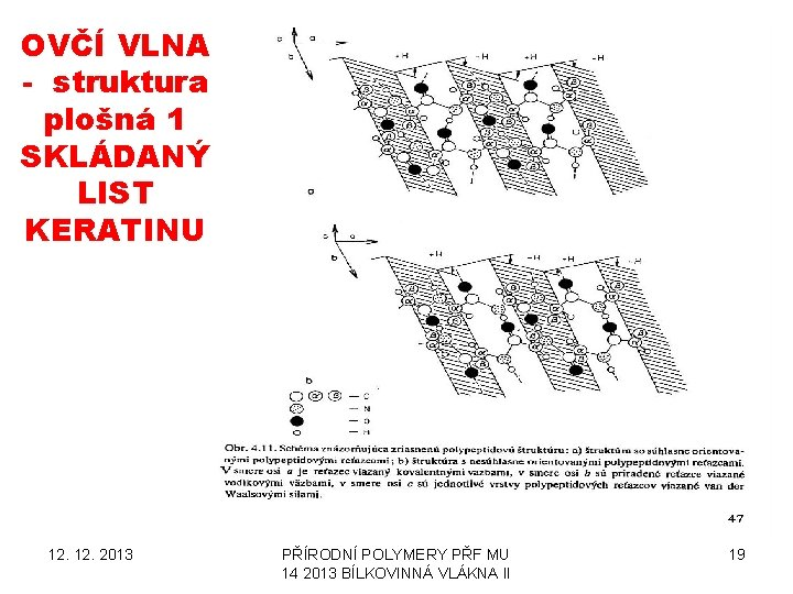 OVČÍ VLNA - struktura plošná 1 SKLÁDANÝ LIST KERATINU 12. 2013 PŘÍRODNÍ POLYMERY PŘF
