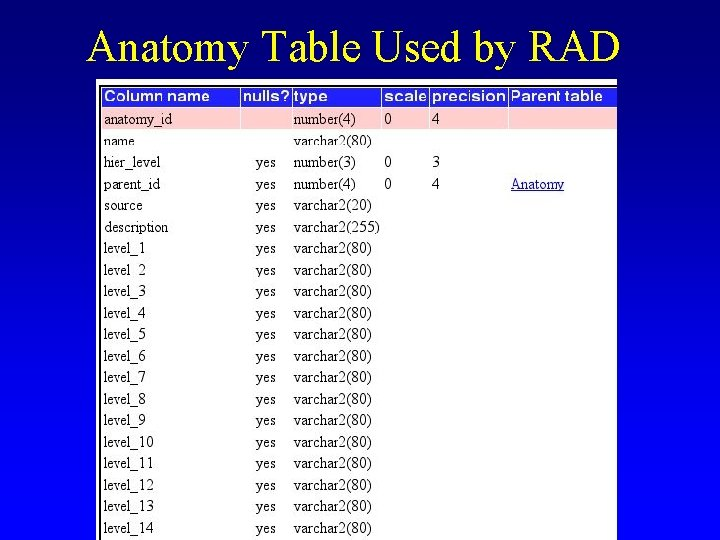 Anatomy Table Used by RAD