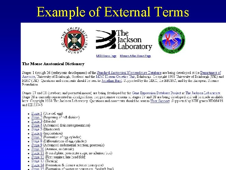 Example of External Terms