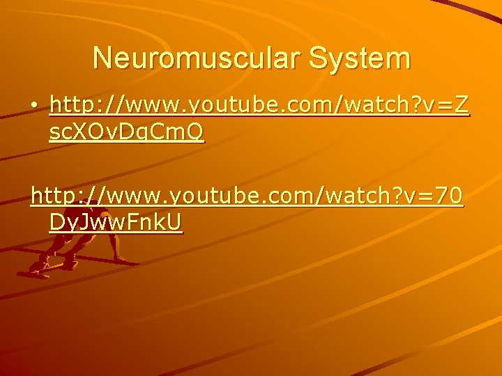 Neuromuscular System • http: //www. youtube. com/watch? v=Z sc. XOv. Dg. Cm. Q http: