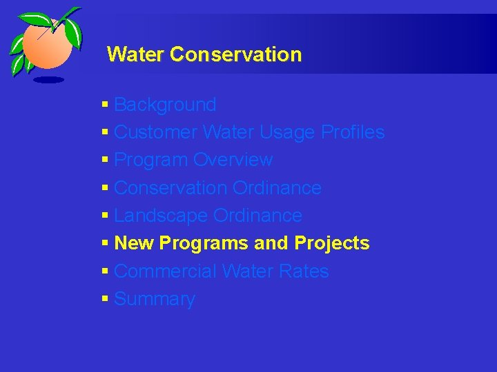 Water Conservation § Background § Customer Water Usage Profiles § Program Overview § Conservation