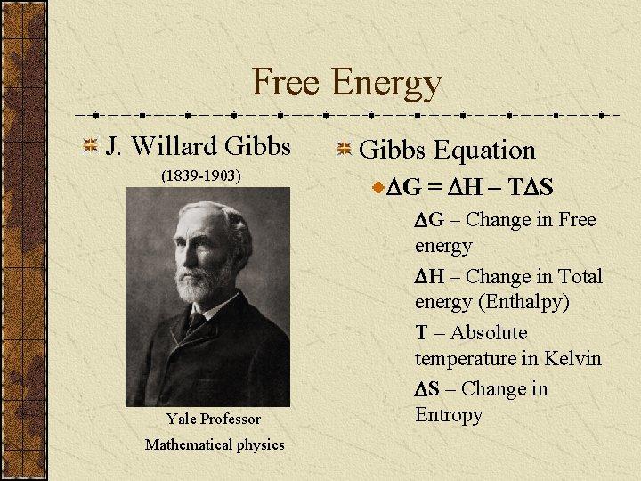 Free Energy J. Willard Gibbs (1839 -1903) Yale Professor Mathematical physics Gibbs Equation DG