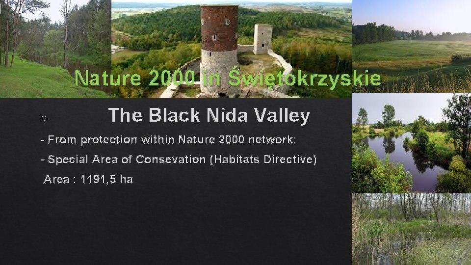 Nature 2000 in Świętokrzyskie The Black Nida Valley - From protection within Nature 2000