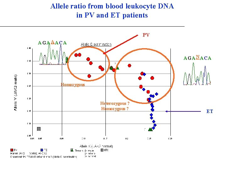 Allele ratio from blood leukocyte DNA in PV and ET patients PV A GA
