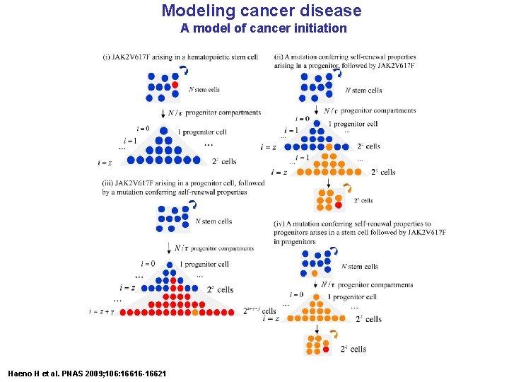 Modeling cancer disease A model of cancer initiation Haeno H et al. PNAS 2009;