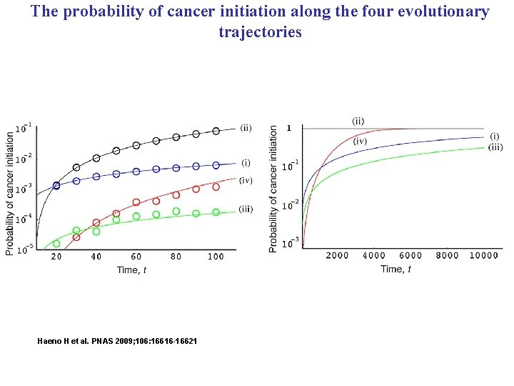 The probability of cancer initiation along the four evolutionary trajectories Haeno H et al.