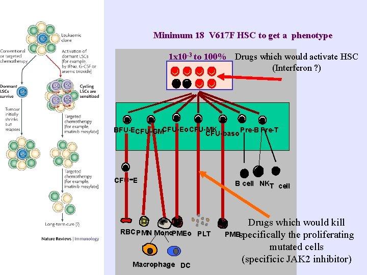 Minimum 18 V 617 F HSC to get a phenotype 1 x 10 -3