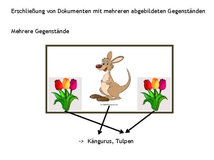 Erschließung von Dokumenten mit mehreren abgebildeten Gegenständen Mehrere Gegenstände -> Kängurus, Tulpen