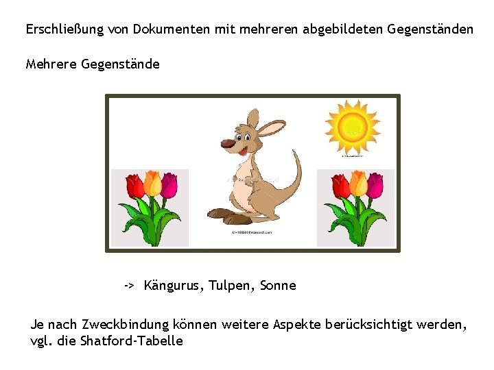 Erschließung von Dokumenten mit mehreren abgebildeten Gegenständen Mehrere Gegenstände -> Kängurus, Tulpen, Sonne Je