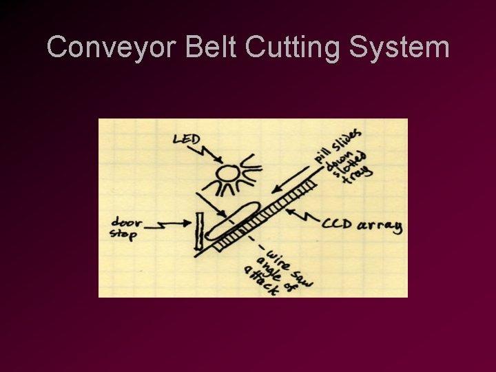 Conveyor Belt Cutting System