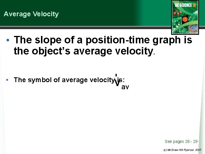 Average Velocity • The slope of a position-time graph is the object's average velocity.