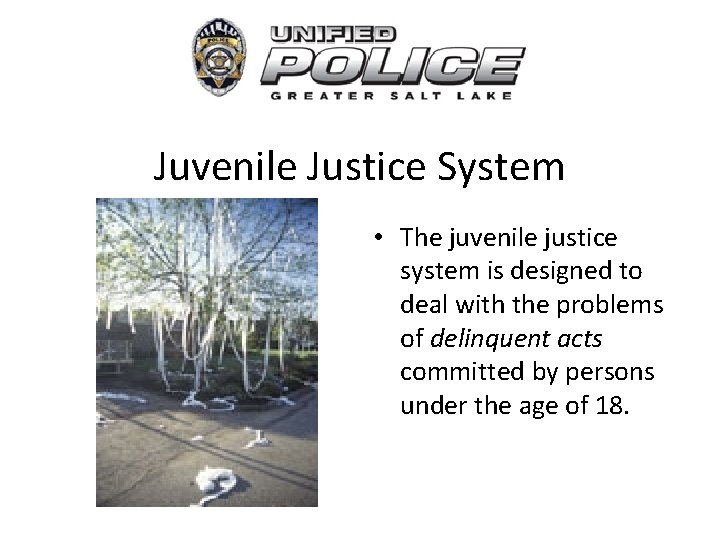 Juvenile Justice System • The juvenile justice system is designed to deal with the