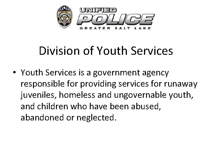 Division of Youth Services • Youth Services is a government agency responsible for providing
