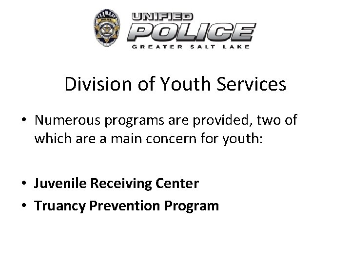 Division of Youth Services • Numerous programs are provided, two of which are a