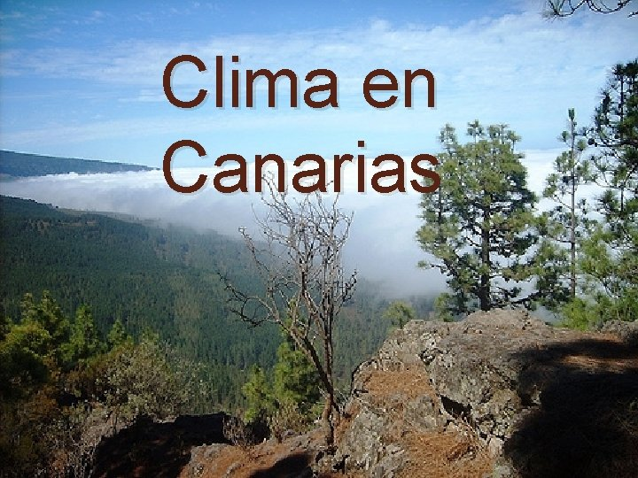 Clima en Canarias