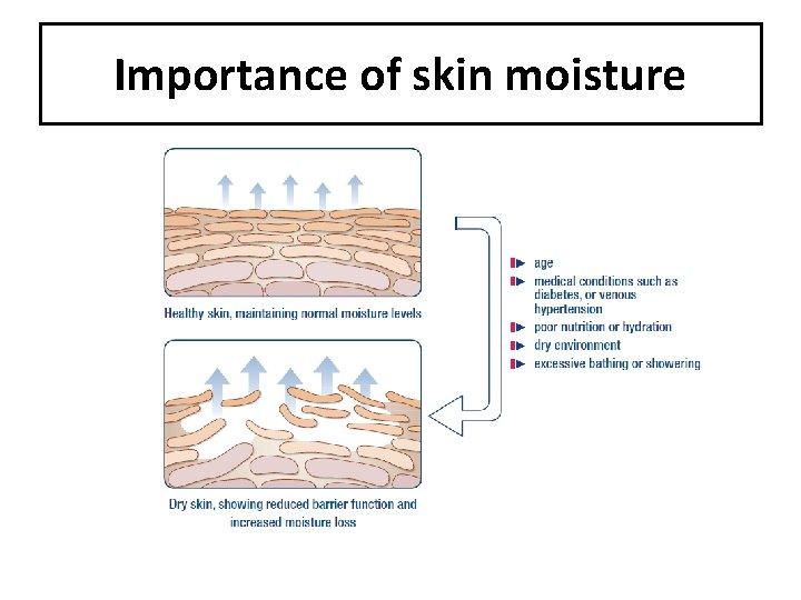 Importance of skin moisture