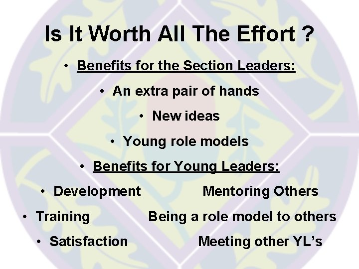 Is It Worth All The Effort ? • Benefits for the Section Leaders: •