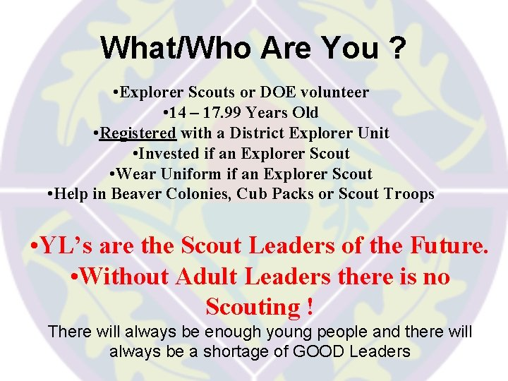 What/Who Are You ? • Explorer Scouts or DOE volunteer • 14 – 17.