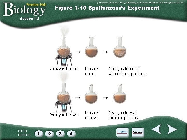 Figure 1 -10 Spallanzani's Experiment Section 1 -2 Go to Section: Gravy is boiled.