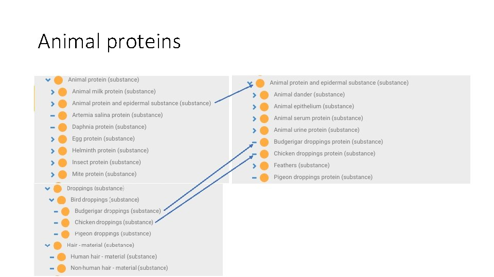 Animal proteins