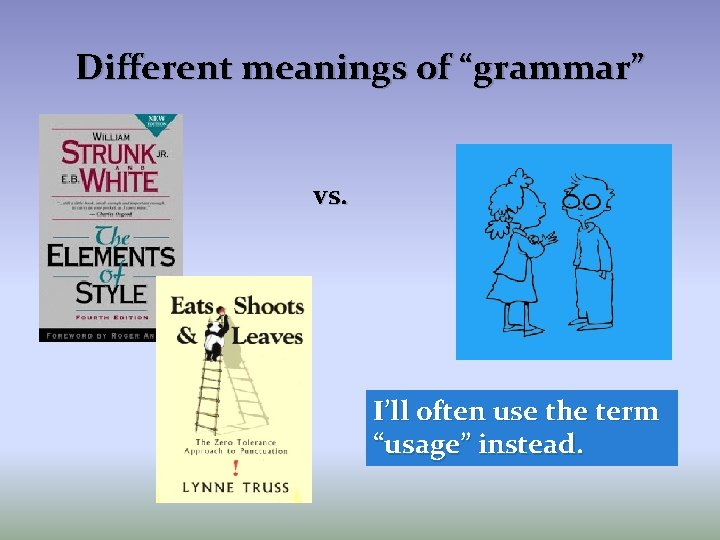 """Different meanings of """"grammar"""" vs. I'll often use the term """"usage"""" instead."""