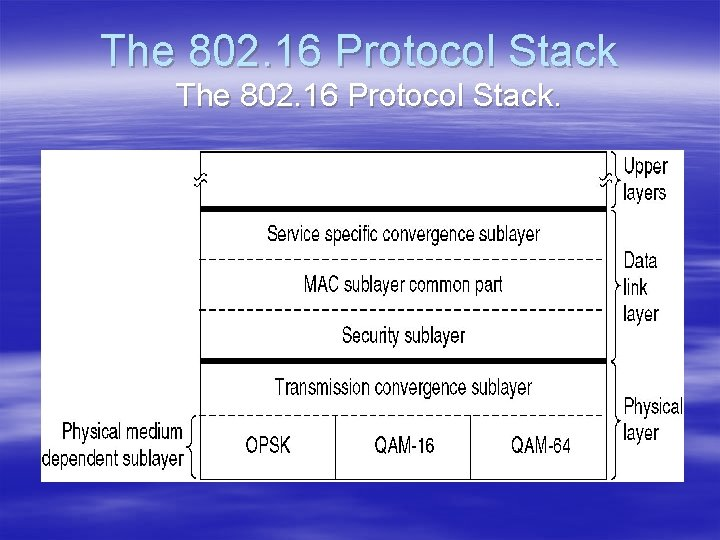 The 802. 16 Protocol Stack.