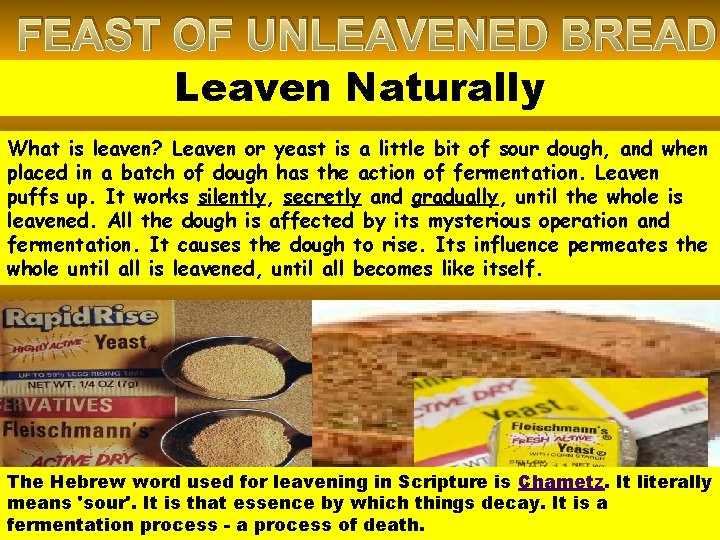 FEAST OF UNLEAVENED BREAD Leaven Naturally What is leaven? Leaven or yeast is a