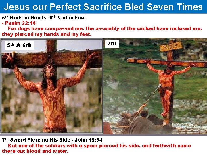 Jesus our Perfect Sacrifice Bled Seven Times 5 th Nails in Hands 6 th