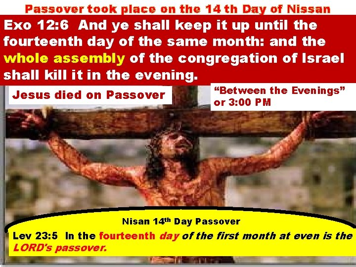 Passover took place on the 14 th Day of Nissan Exo 12: 6 And
