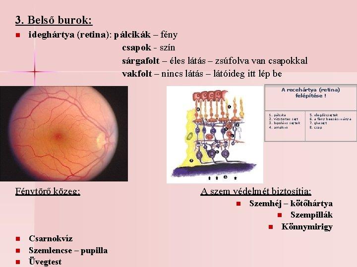 3 v hatása a látásra)