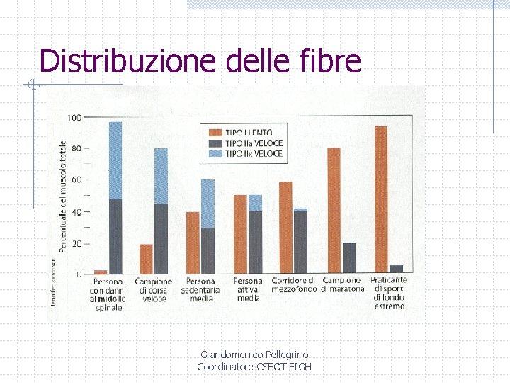 Distribuzione delle fibre Giandomenico Pellegrino Coordinatore CSFQT FIGH