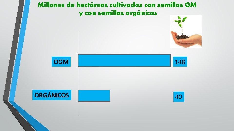 Millones de hectáreas cultivadas con semillas GM y con semillas orgánicas OGM ORGÁNICOS 148