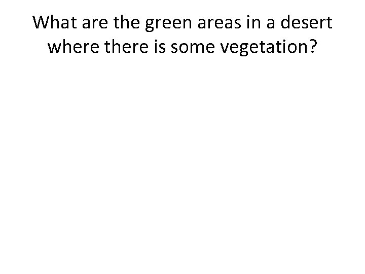 What are the green areas in a desert where there is some vegetation?