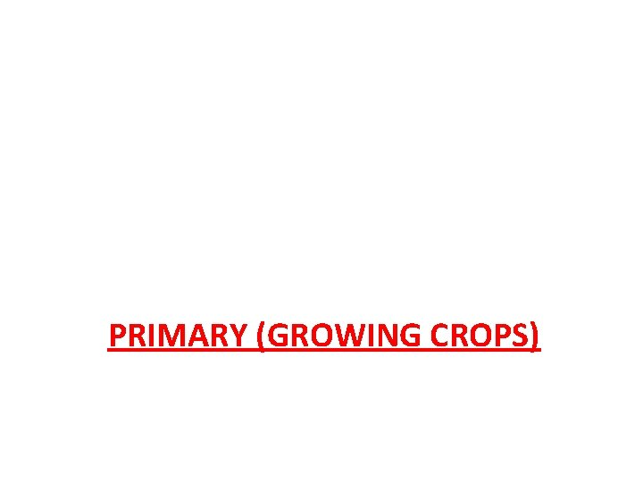 PRIMARY (GROWING CROPS)