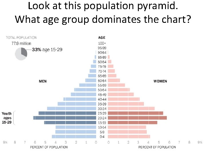 Look at this population pyramid. What age group dominates the chart?
