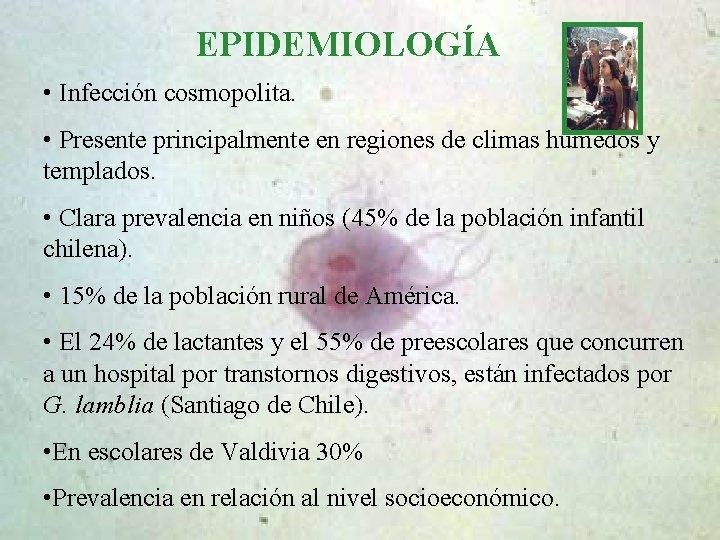 epidemiologia giardiozei)