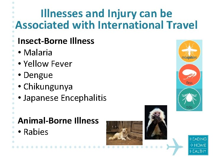 Illnesses and Injury can be Associated with International Travel Insect-Borne Illness • Malaria •