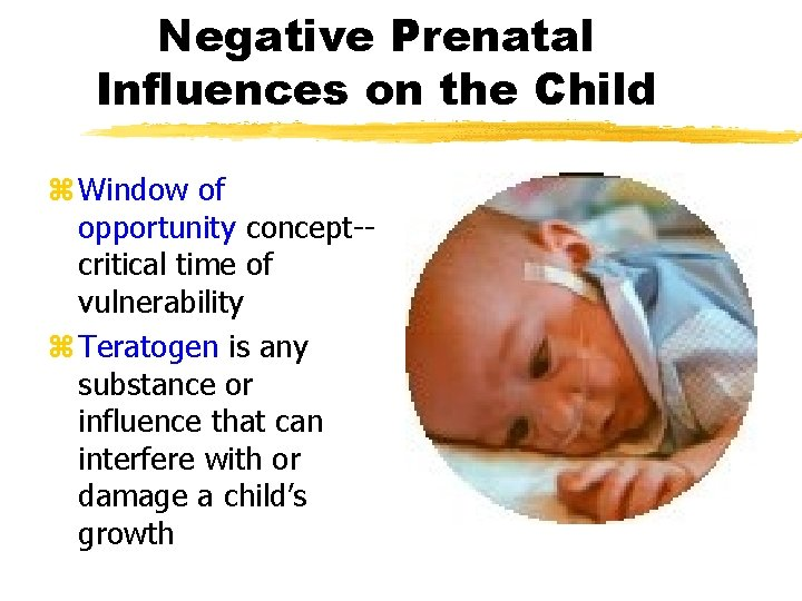 Negative Prenatal Influences on the Child z Window of opportunity concept-critical time of vulnerability