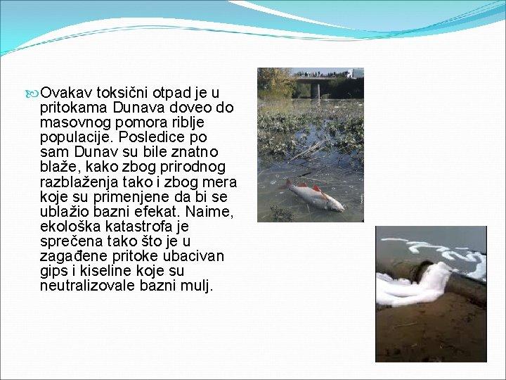 Ovakav toksični otpad je u pritokama Dunava doveo do masovnog pomora riblje populacije.