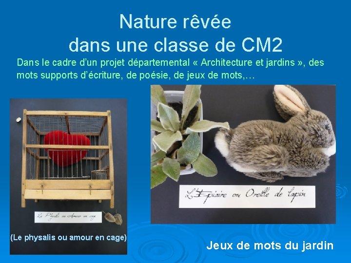 Nature rêvée dans une classe de CM 2 Dans le cadre d'un projet départemental