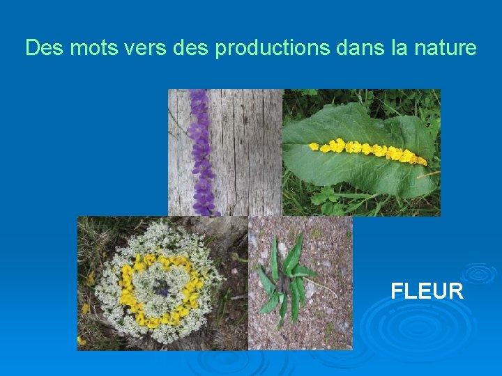 Des mots vers des productions dans la nature FLEUR