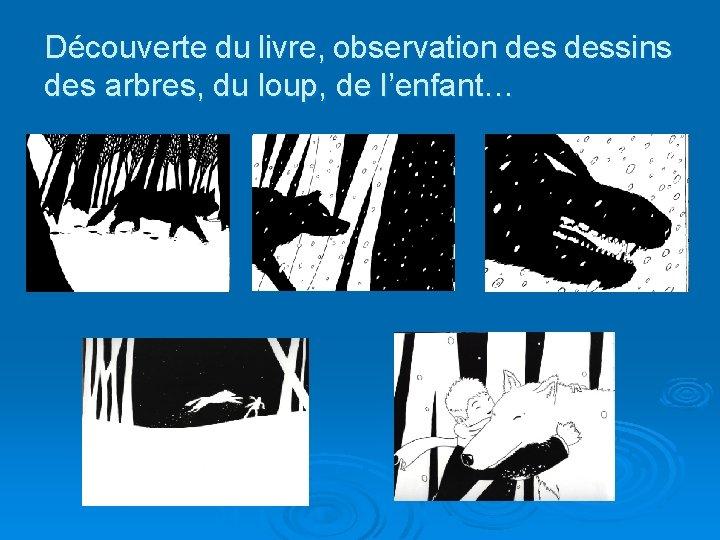 Découverte du livre, observation dessins des arbres, du loup, de l'enfant…