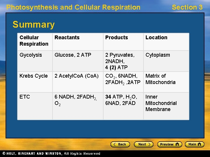 Photosynthesis and Cellular Respiration Section 3 Summary Cellular Respiration Reactants Products Location Gycolysis Glucose,