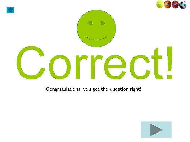 Correct! Congratulations, you got the question right!
