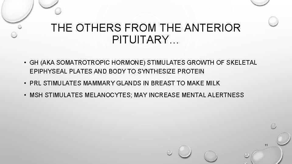 THE OTHERS FROM THE ANTERIOR PITUITARY… • GH (AKA SOMATROTROPIC HORMONE) STIMULATES GROWTH OF