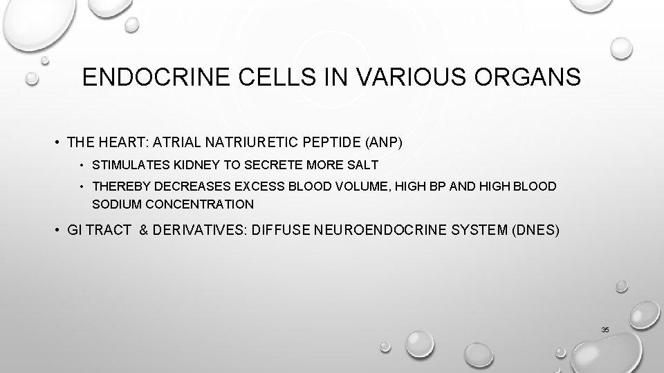 ENDOCRINE CELLS IN VARIOUS ORGANS • THE HEART: ATRIAL NATRIURETIC PEPTIDE (ANP) • STIMULATES